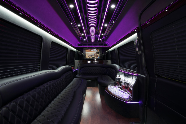 12 Passenger Party Buses Dallas